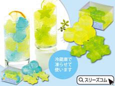 ビタミンカラー保冷剤ブロック